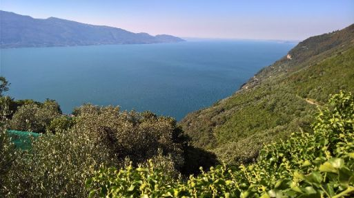 Lago di Garda dal Santuario di Montecastello