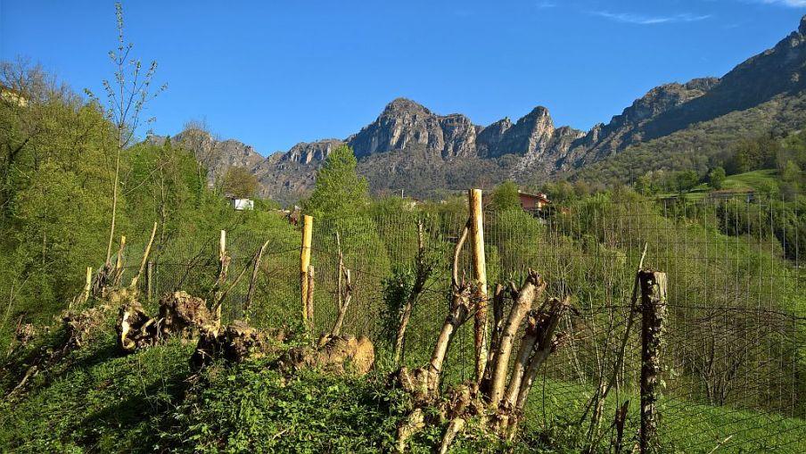 Monti di Lodrino
