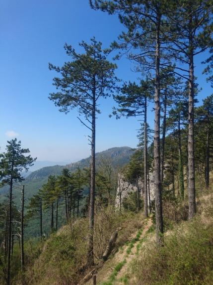 Campo Cecina ultimi chilometri