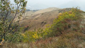 Monte Lesima