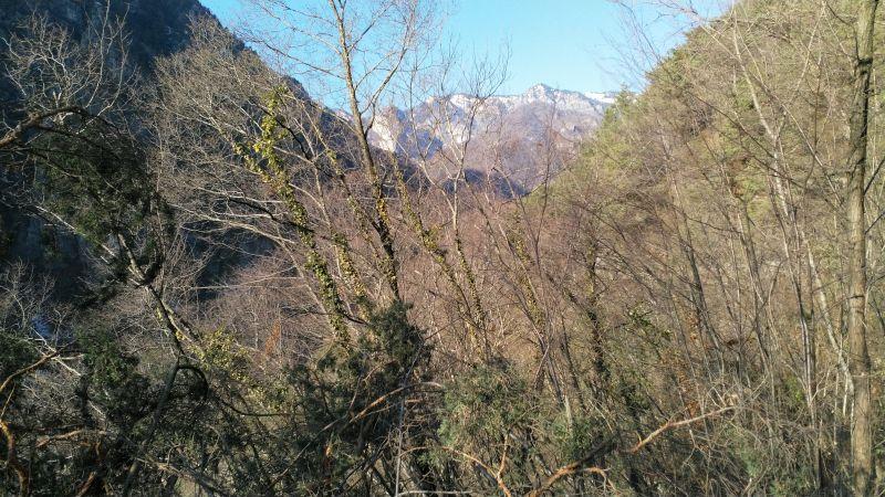 Monte Lavino