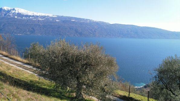 Lago di Garda, da Navazzo