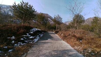 Pineta di valle Duppo, muro finale