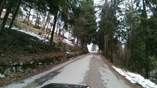 Bosco della Fobbia 900mt