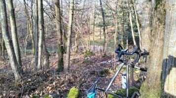 Bici nel bosco