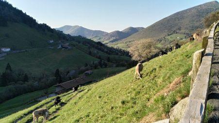 Località Bratta