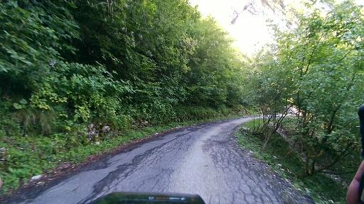 Il bosco di Prada Alta