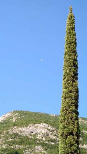 La luna ancora alta in cielo