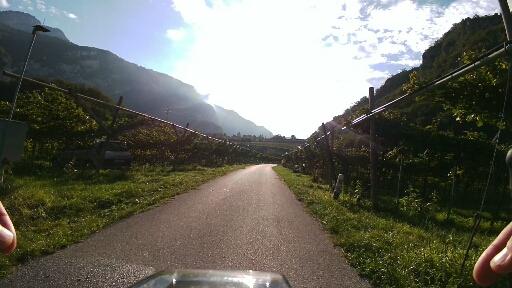 Ciclabile per Rovereto immersa nelle vigne