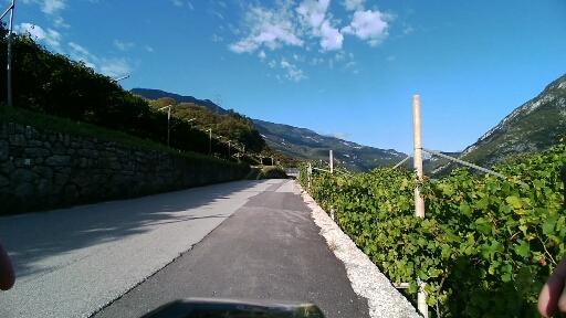 Inizio strada alternativa tra le vigne