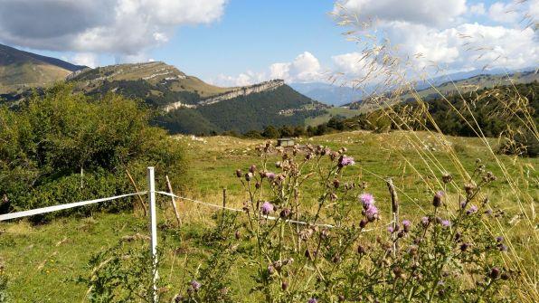 Alpeggie di Pra Alpesina e Monte Altissimo