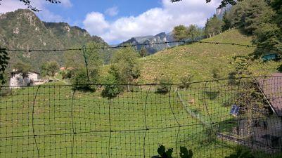 Alpeggi di Cadria