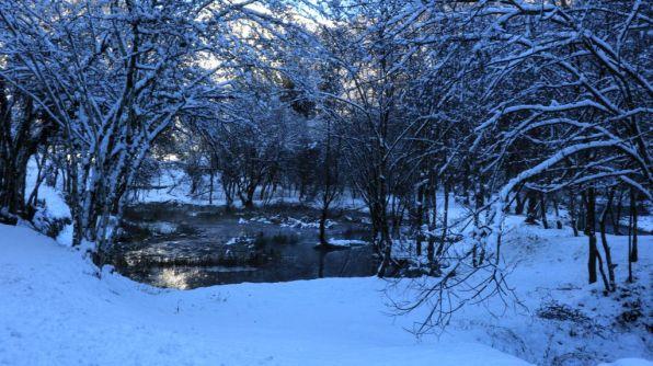 """""""The Frozen Place"""""""