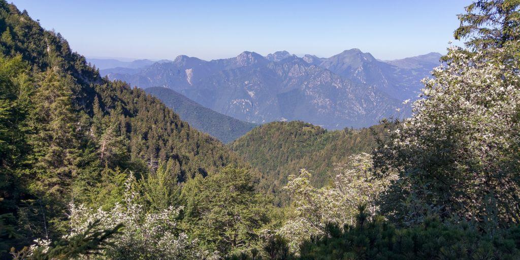 Vista verso il Gaver, Malga Alpo
