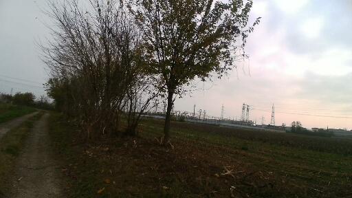 Folzano, campi e tralicci
